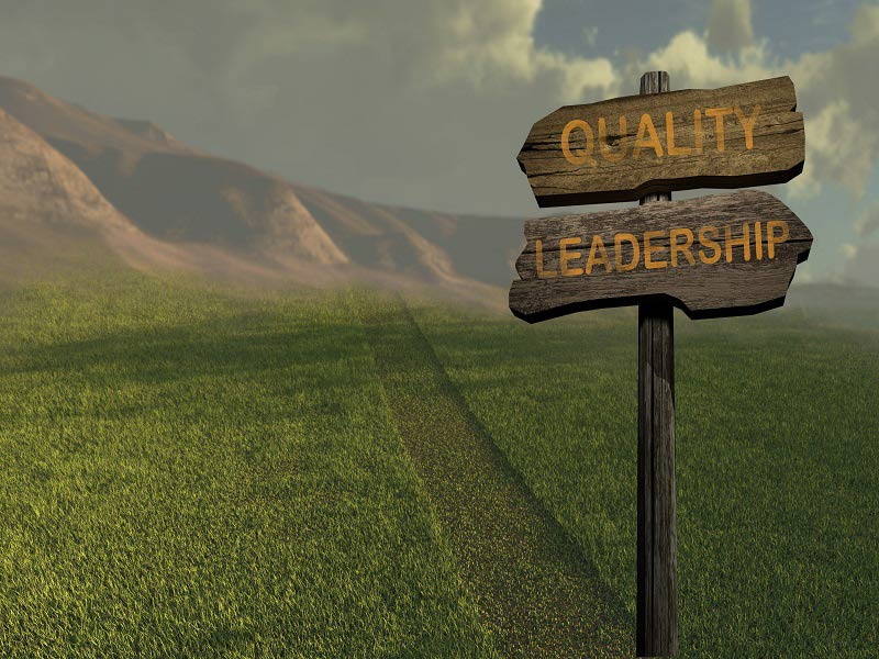 Personality, Learning Agility and Leadership